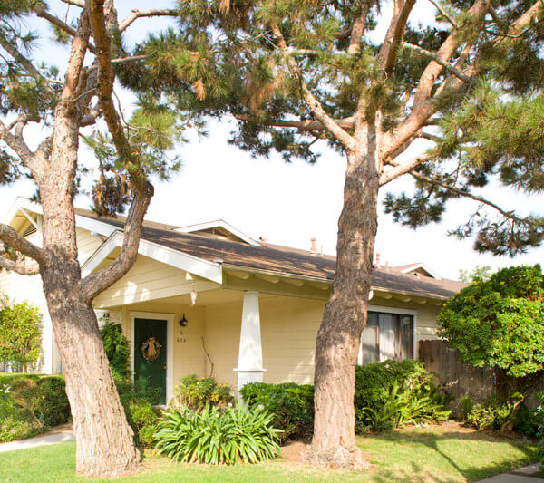 Outside view of a Wilson Cottage and trees in its front lawn