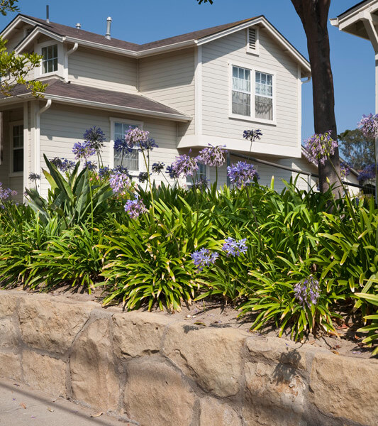 Outside view of many plants outside of the units