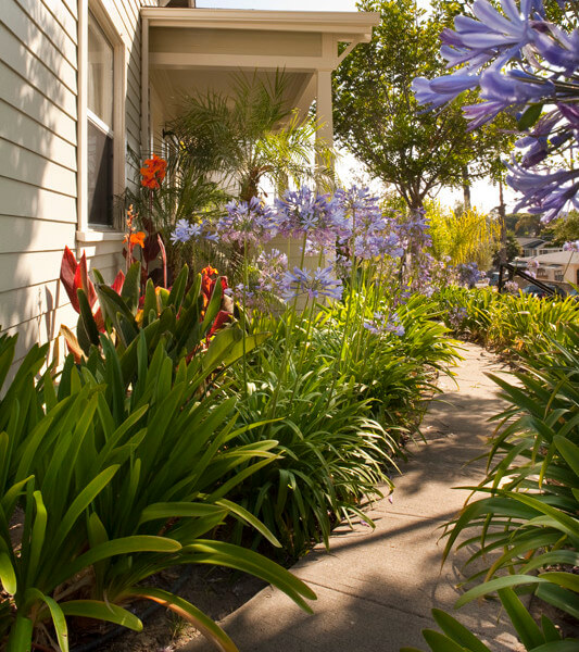 Outside view of a flowery path