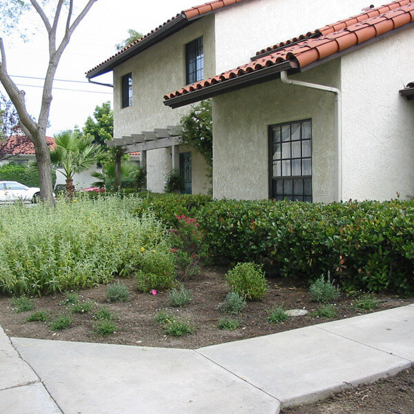 Outside view of plants in front of multiple units