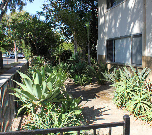 Outside view of the plants on the property