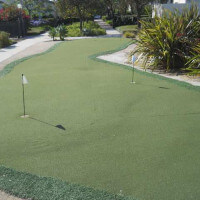 A small golf green with two holes