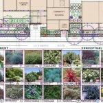 Proposed landscape design